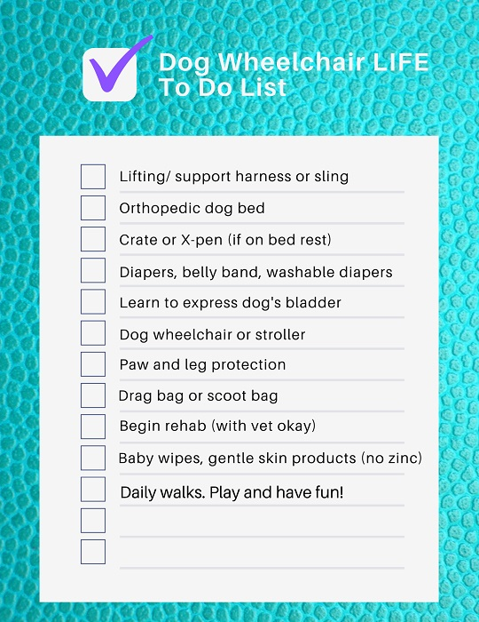 To Do List for paralyzed dogs