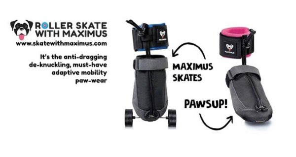Skate-with-maximus-logo-600x319