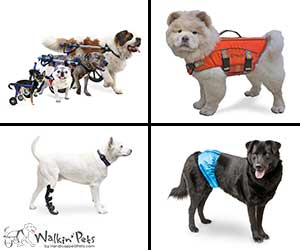walkin-all-pet-products[1]