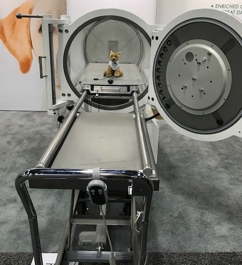 HBOT Hyperbaric Oxygen Therapy chamber for dogs