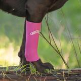 Walkabout Harnesses dog compression sleeve
