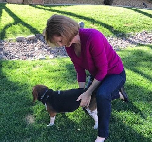 Woman expressing a dog's bladder