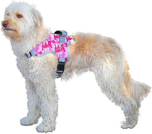 Harness for dog wheelchair
