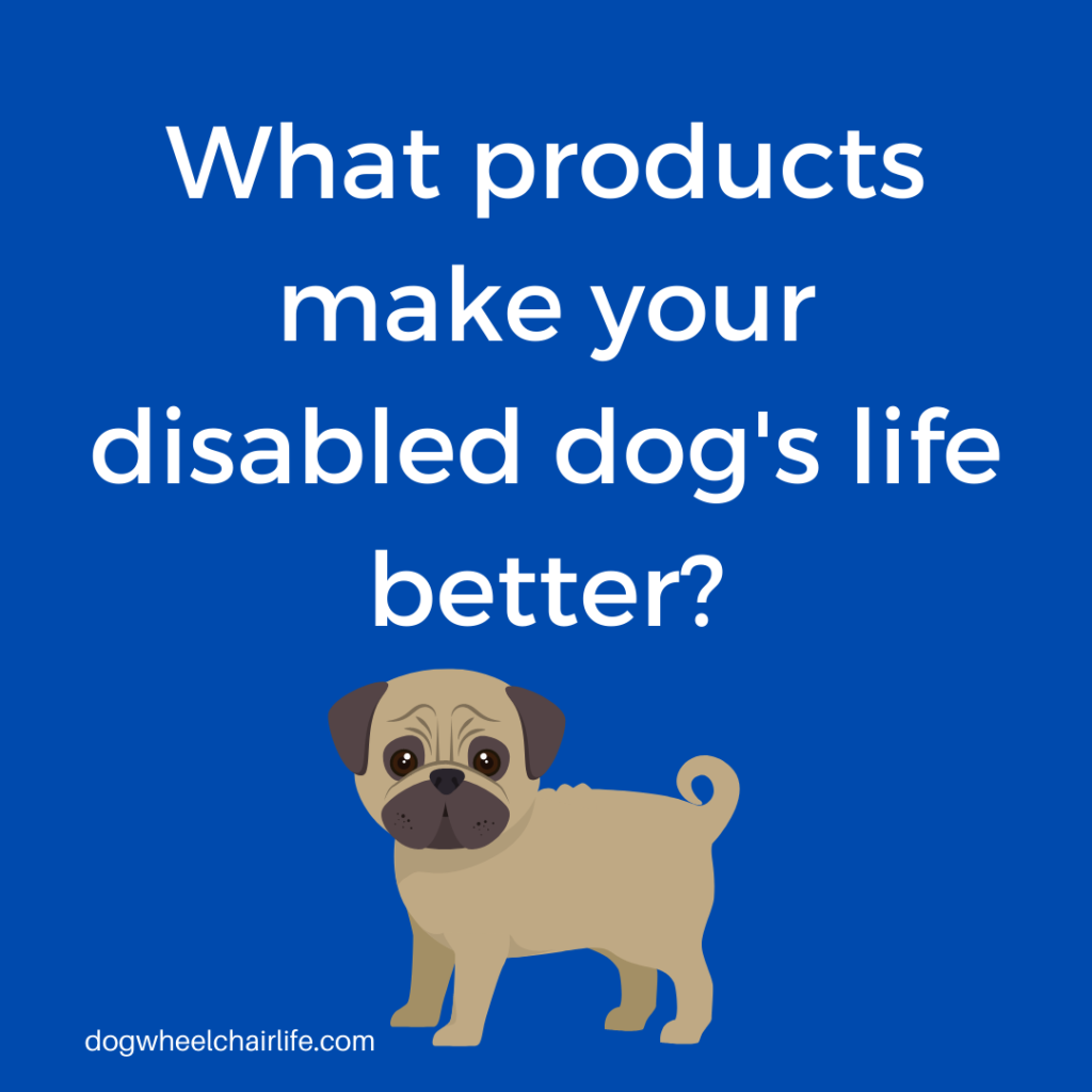Products that make your disabled dog's life better