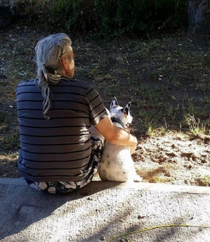 Paralyzed dog sitting with her new owner