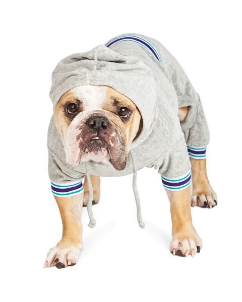 Bulldog wearing a hooded baby onesie