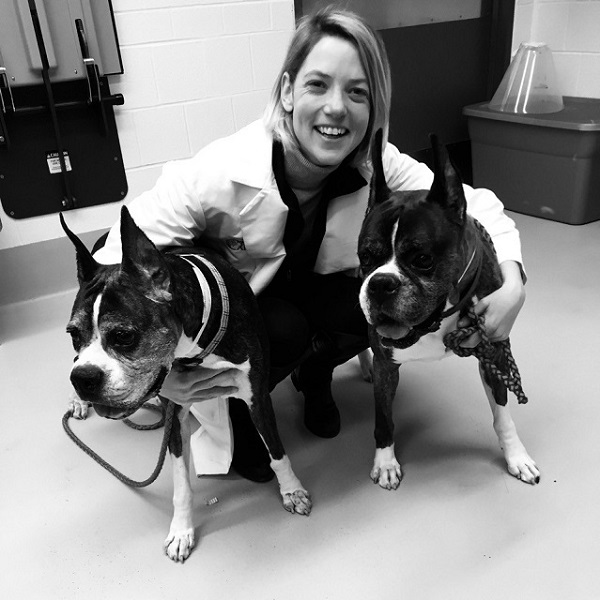 Dr. Phillipa J. Johnson's advanced imaging study for dogs with Degenerative Myelopathy